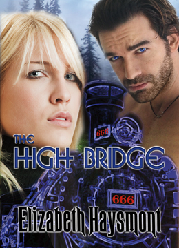 Buy The High Bridge today